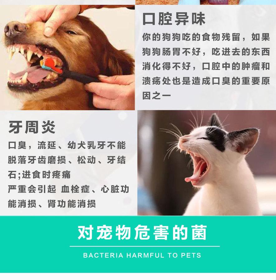 林蛙抗菌肽详情页3_03.jpg